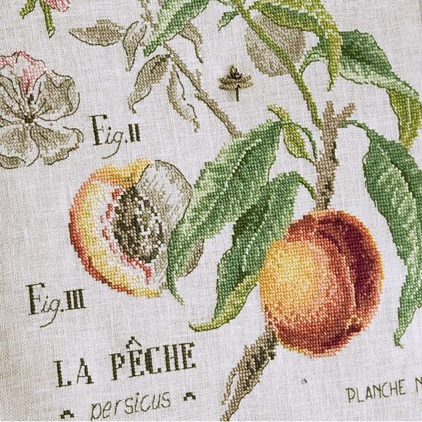 Вышивка персик купить