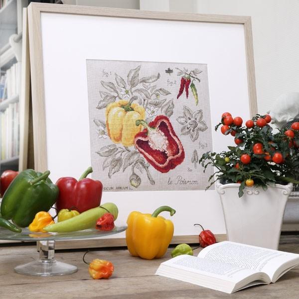 Перец / Étude aux poivrons