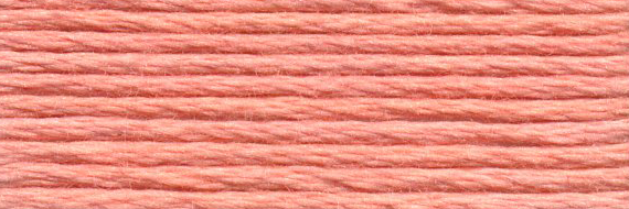 DMC 3824 - Six Strand Floss